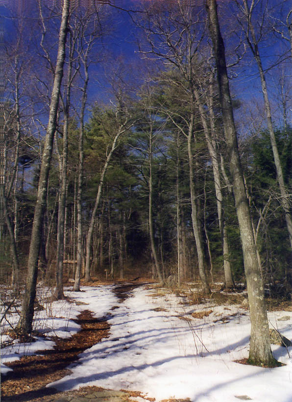 Tattapanum Trail one mile north-east from Fall River. Massachusetts