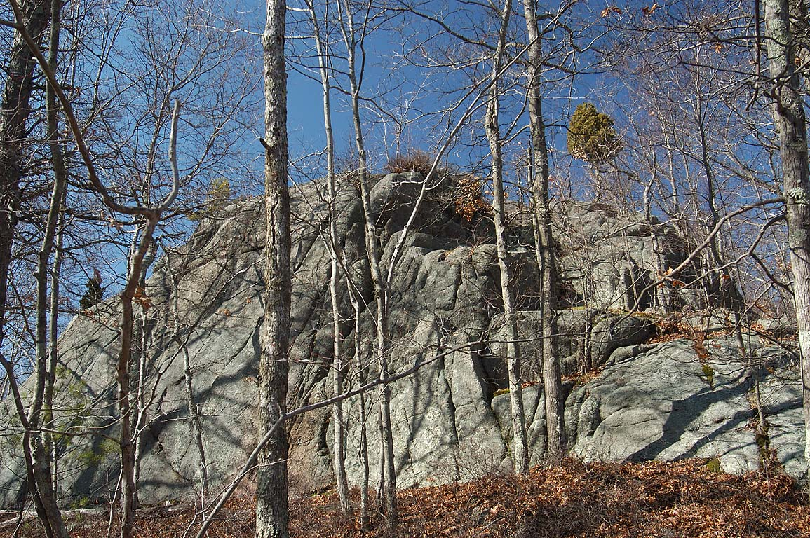 Hogs Rock in Freetown Fall River State Forest, Massachusetts