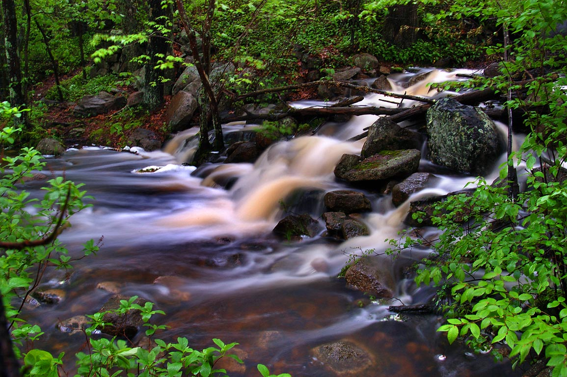 Rattlesnake Brook flowing over spillway of Doctor...Fall River State Forest. Massachusetts