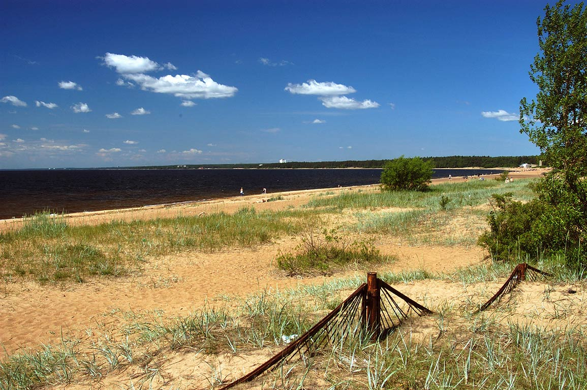 A beach of Gulf of Finland near Solnechnoye, north-west from St.Petersburg. Russia