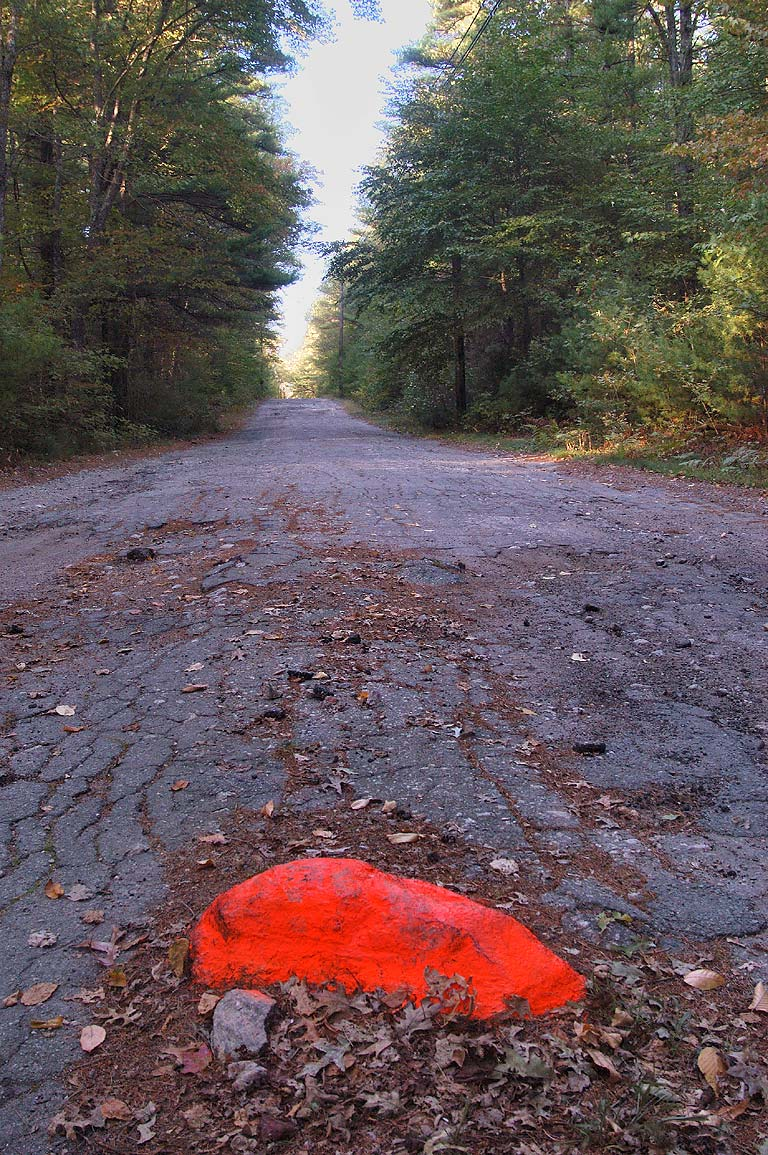 Bell Rock Rd. in Freetown-Fall River State forest. Massachusetts