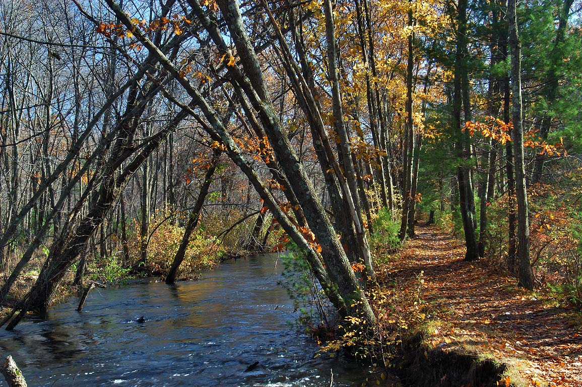 Plummer's Trail along Blackstone Canal in...State Park. Northbridge, Massachusetts