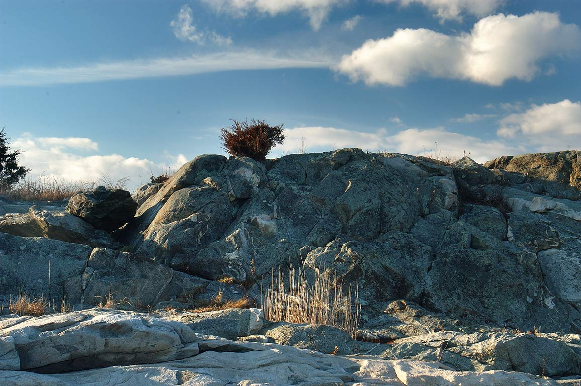 A rock on Little Beach, near the end of Horseneck Rd.. Westport, Massachusetts