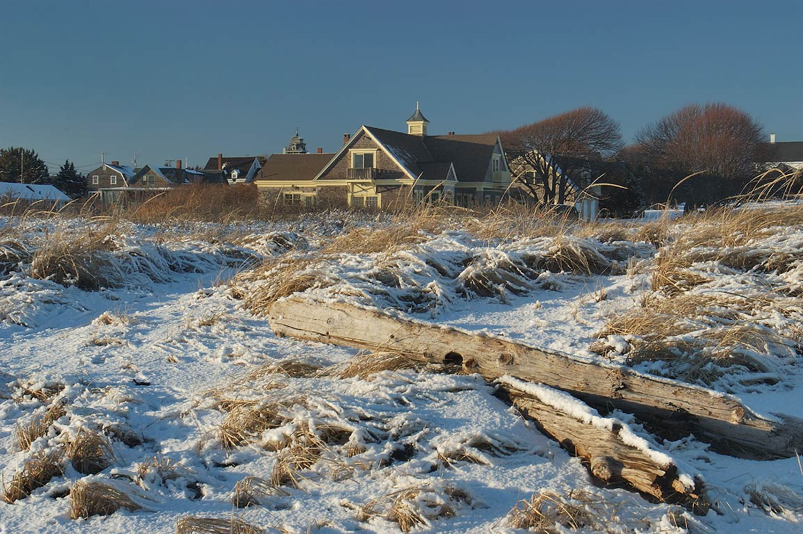 Driftwood near the end of River Rd.. Acoaxet, Massachusetts