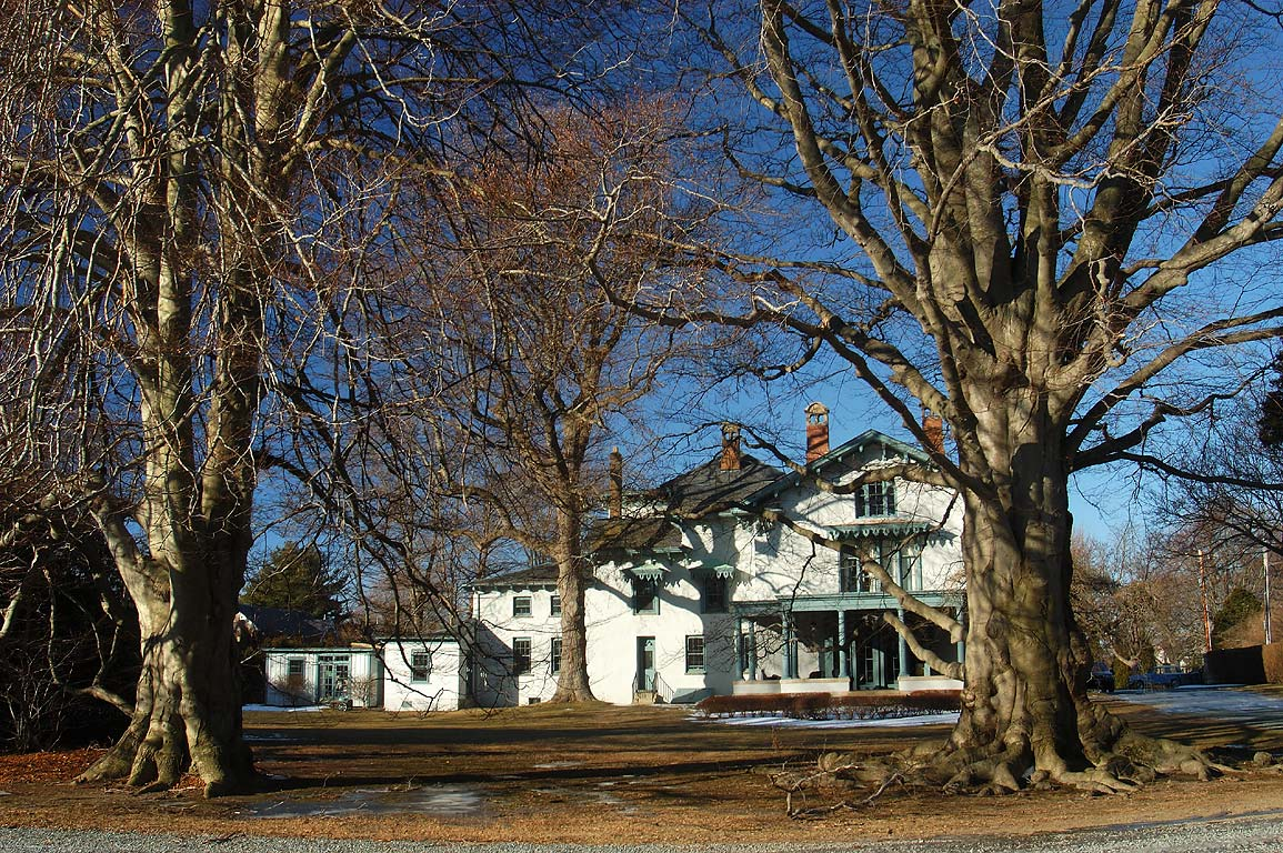 Beech trees and Swanhurst Manor House on Bellevue Ave.. Newport, Rhode Island
