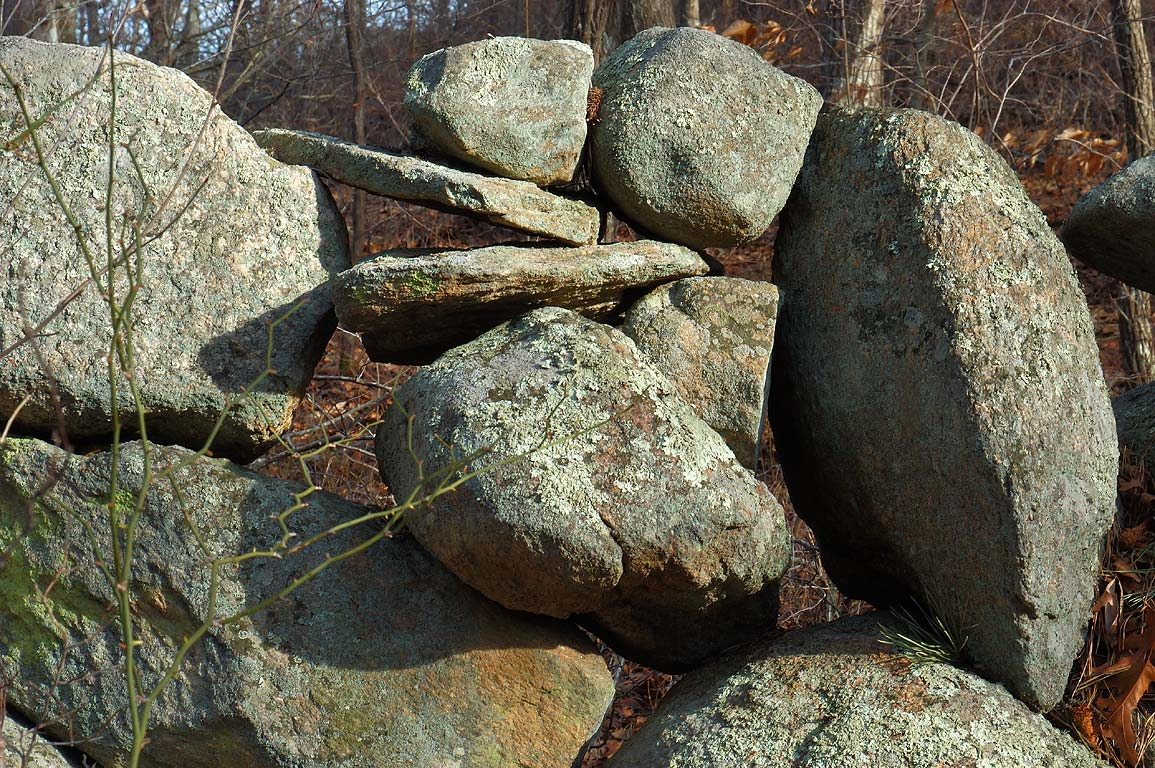 Abandoned stone wall in northern part of Beebe Woods in Cape Cod. Falmouth, Massachusetts