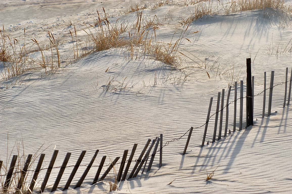 A fence of Horseneck Beach. Westport, Massachusetts
