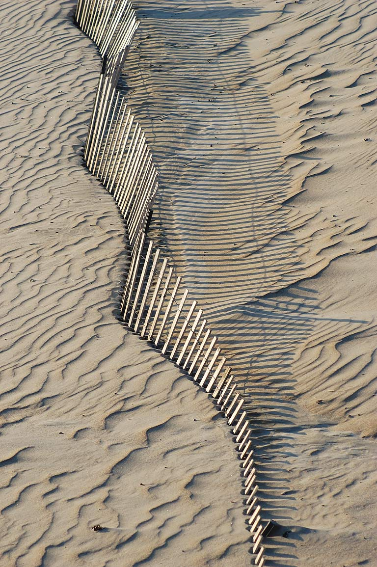 Fences of Horseneck Beach. Westport, Massachusetts