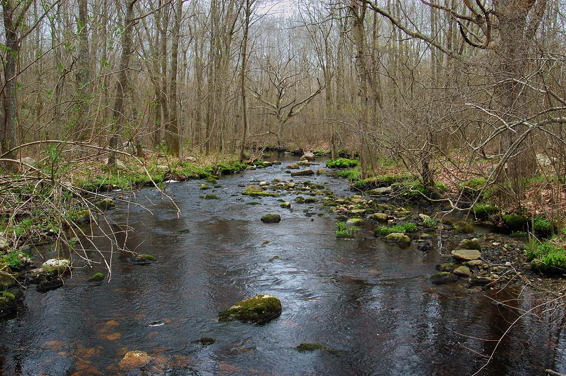 Angeline Brook, view from Cornell Rd. bridge. Wesport, Massachusetts