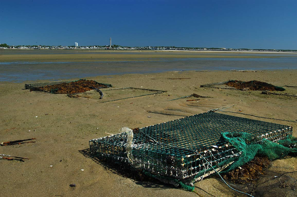 Lobster traps at low tide in Provincetown Harbor. Cape Cod, Massachusetts