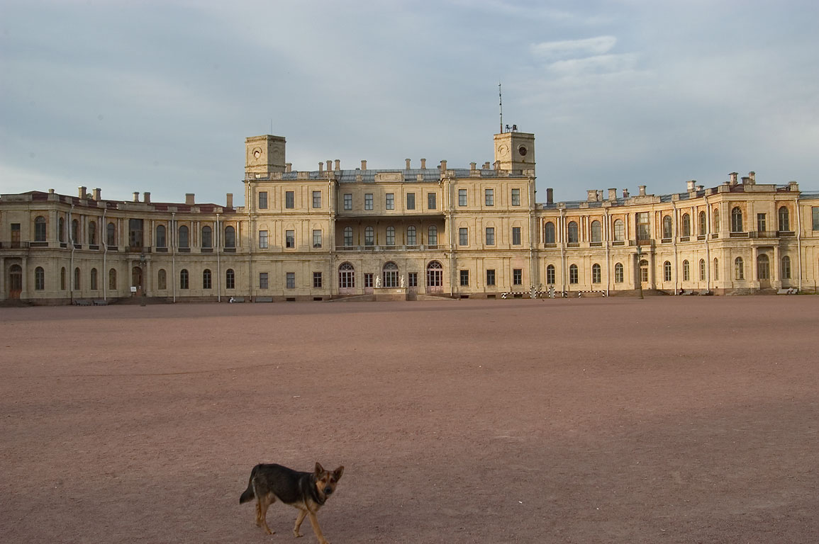 The Gatchina Palace at evening. Leningrad Region, Russia