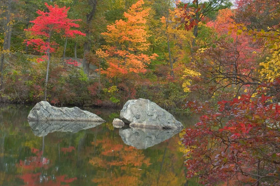 Olney Pond in Lincoln Woods State Park. Providence, Rhode Island
