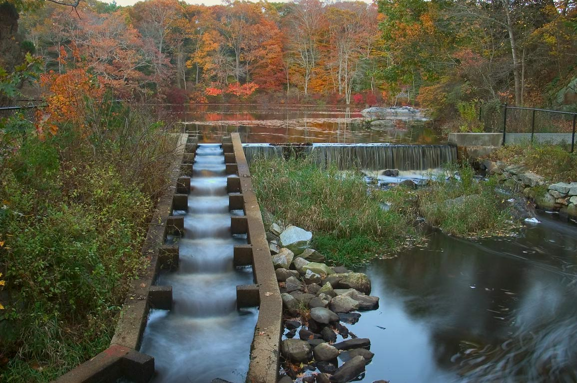 A fish stairs in Russells Mills village, on...O'Dundee Rd.. Dartmouth, Massachusetts