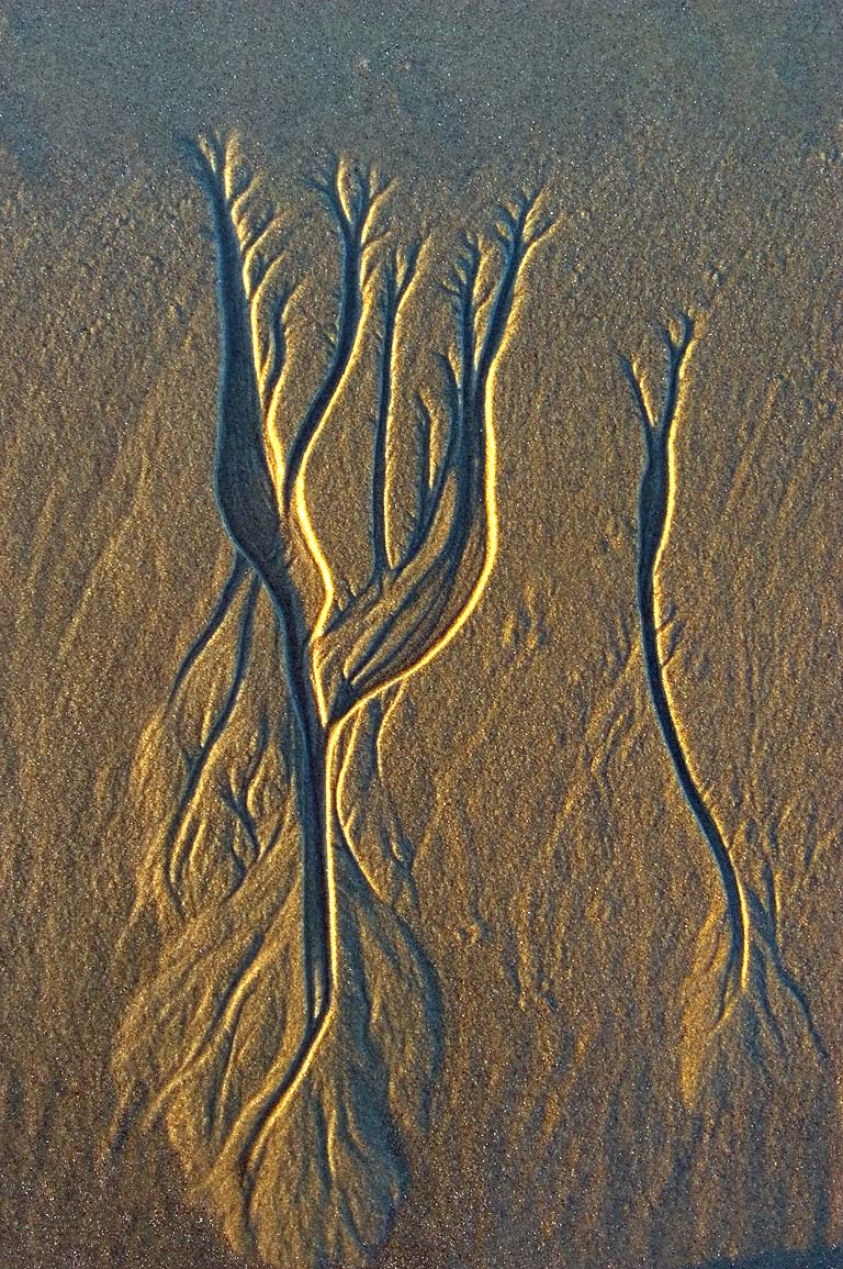 Beach sand pattern at low tide near Richmond Pond...at evening. Westport, Massachusetts