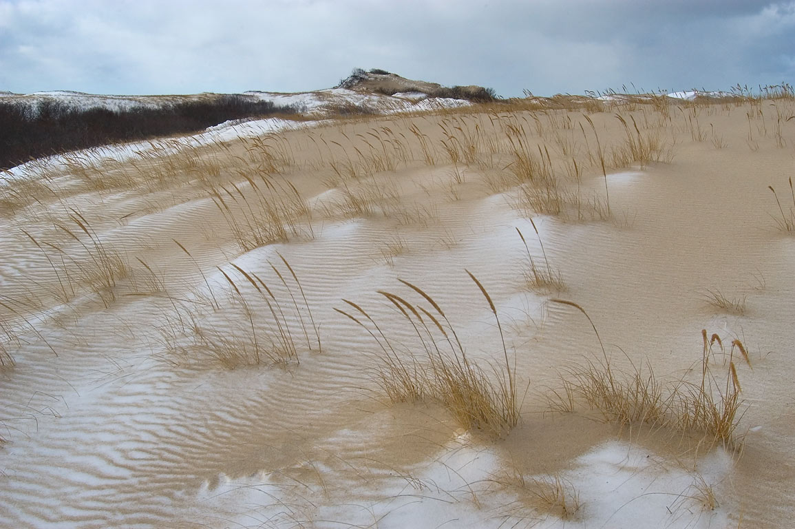 Drifting snow and beach grass on dunes near Snail...Cape Cod. Provincetown, Massachusetts