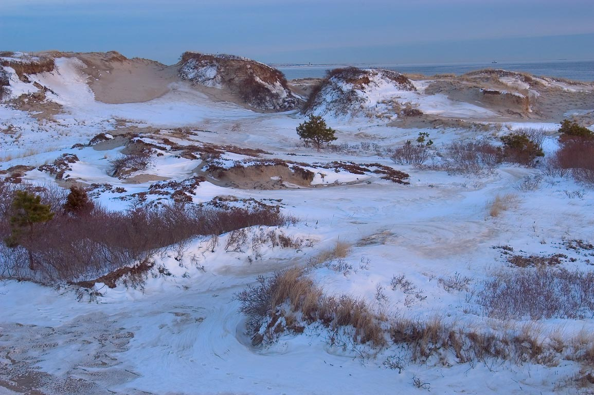 Dunes of Horseneck Beach at evening. Westport, Massachusetts