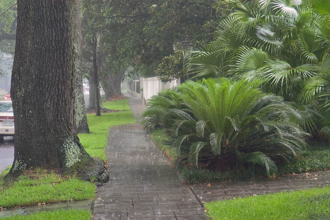 Northern sidewalk of St.Charles Ave. near State St. at rain. New Orleans, Louisiana