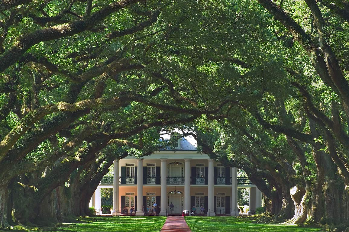 Oak Alley Plantation, view from Rd. 18. Vacherie, Louisiana