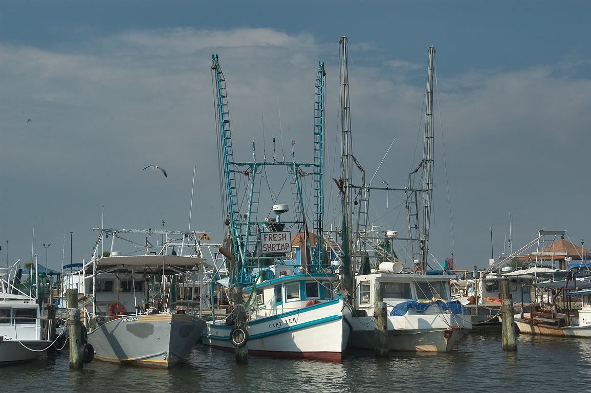 Fishing boats in docks of Pass Christian. Mississippi
