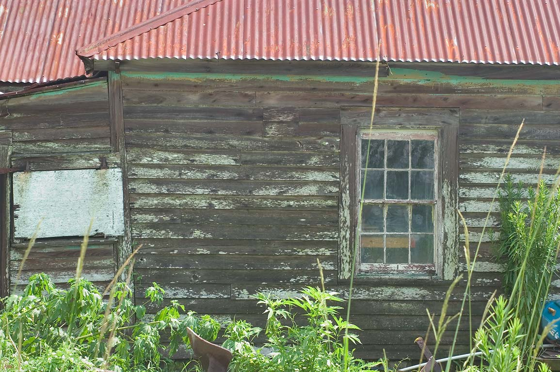 A cabin in Lafitte, Jefferson Parish. Louisiana