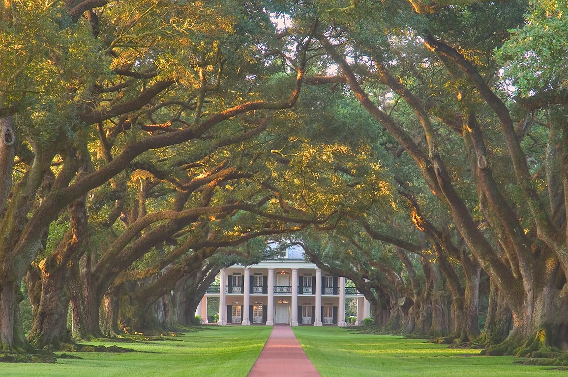 Oak Alley Plantation, view from the gate at Rd. 18, at morning. Vacherie, Louisiana