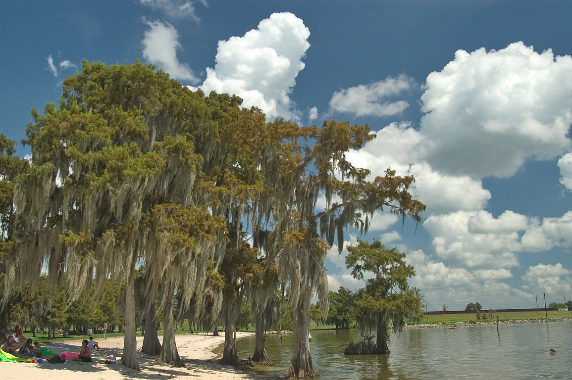 A beach of Lake Palourde in Lake End Park. Morgan City, Louisiana