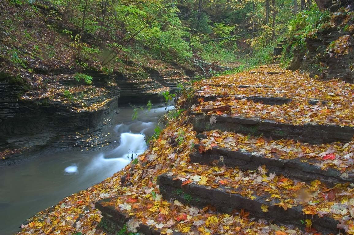 Steps of gorge trail in Buttermilk Falls State Park near Ithaca. New York