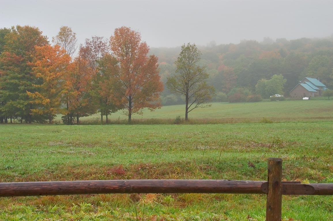 A pasture east from Midline Rd. east from Ithaca, view from a window of a car. New York