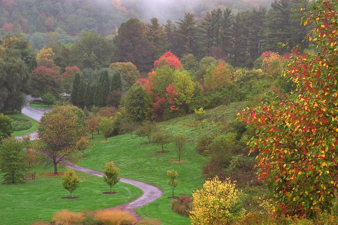 Baird Meadow and Kephart Glen in F. R. Newman...view from a slope. Ithaca, New York