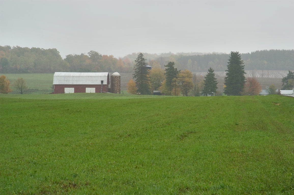 A pasture and a farm, view from C. R. 6. Catharine, New York