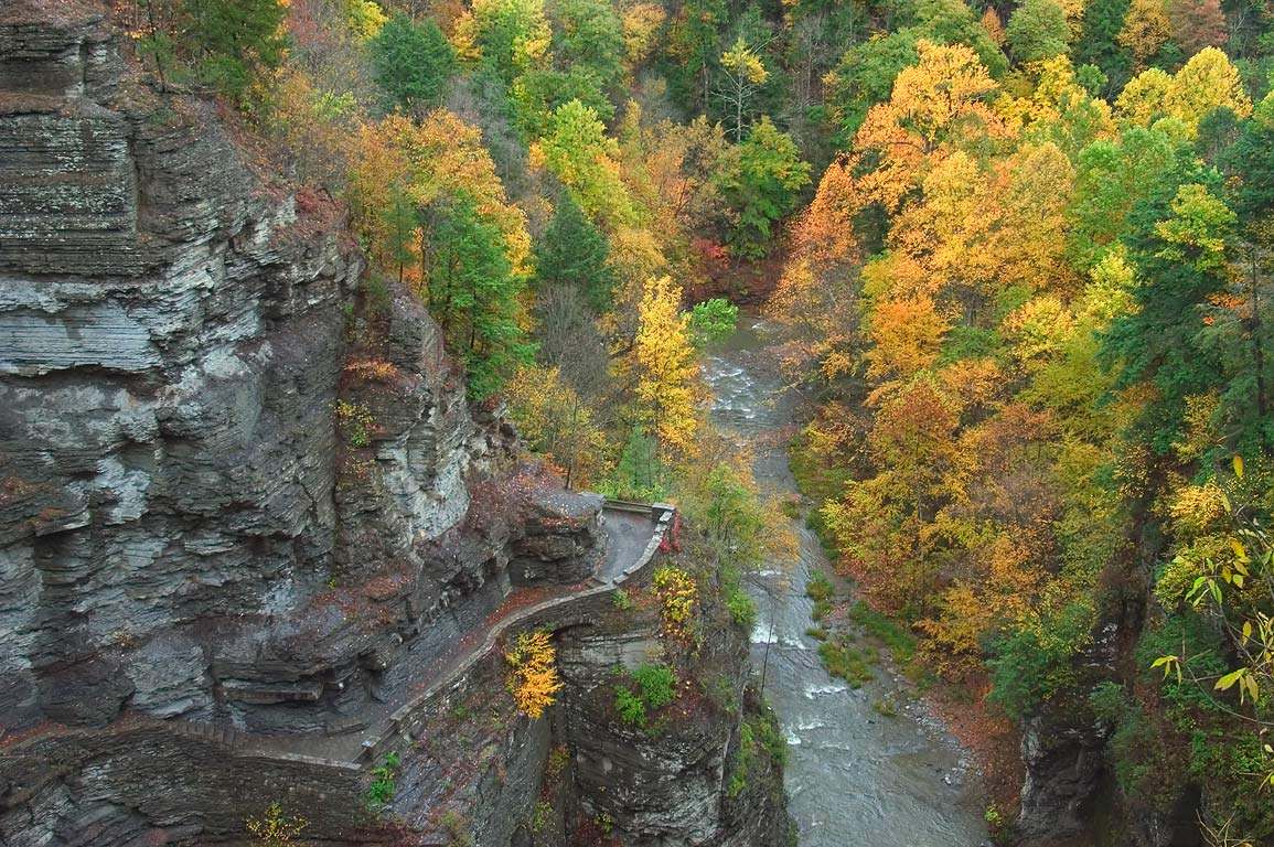 Gorge trail in Robert H. Treman State Park. Ithaca, New York