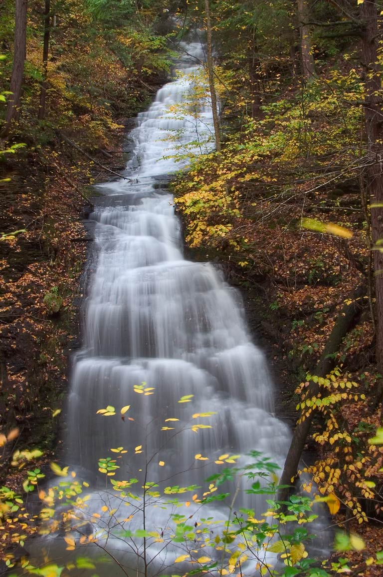 A waterfall on north side of the gorge in Fillmore Glen State Park. Moravia, New York