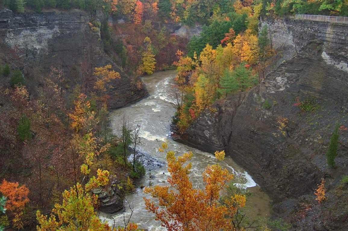 Taughannock Gorge from South Rim Trail. Ithaca, New York