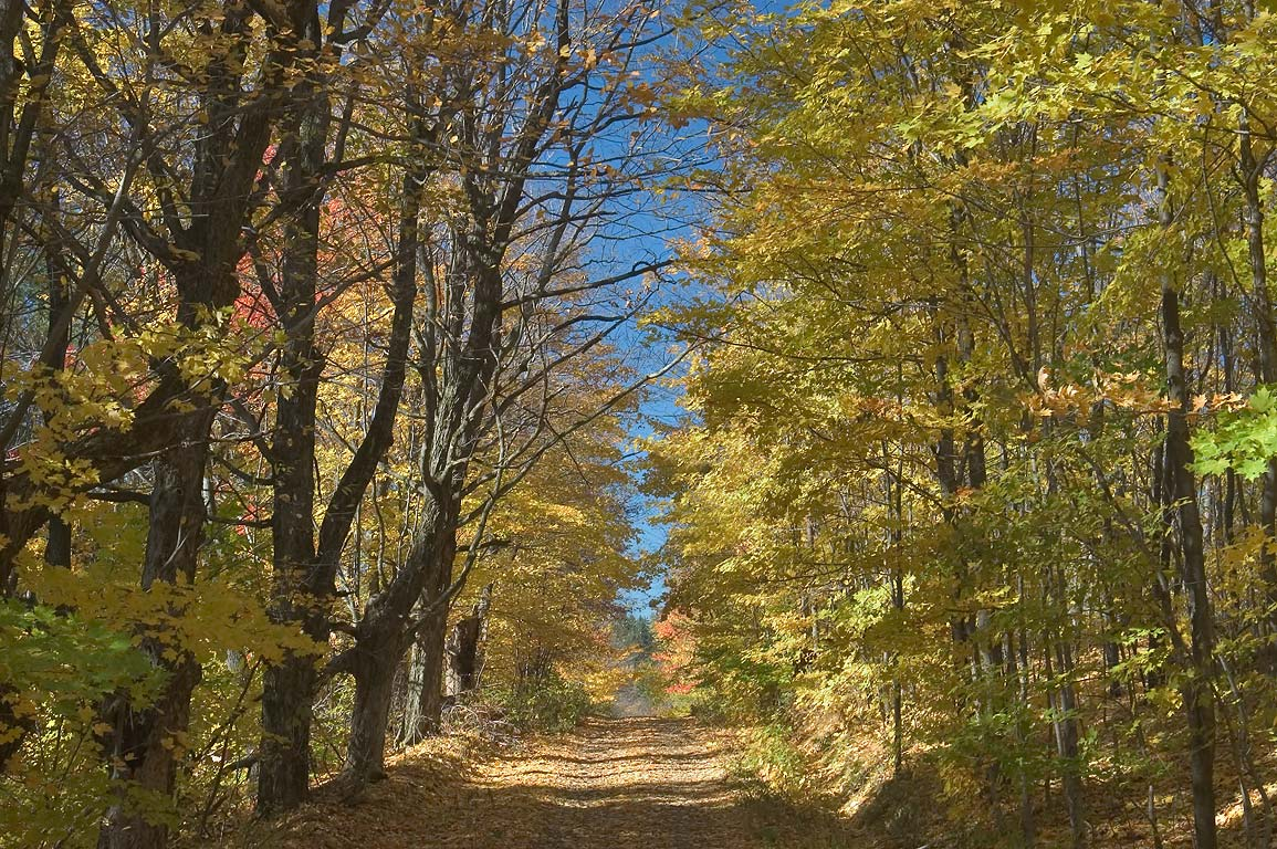 Van Donsel/Valentine Hill Rd. west from Virgil Mountain. Dryden, New York