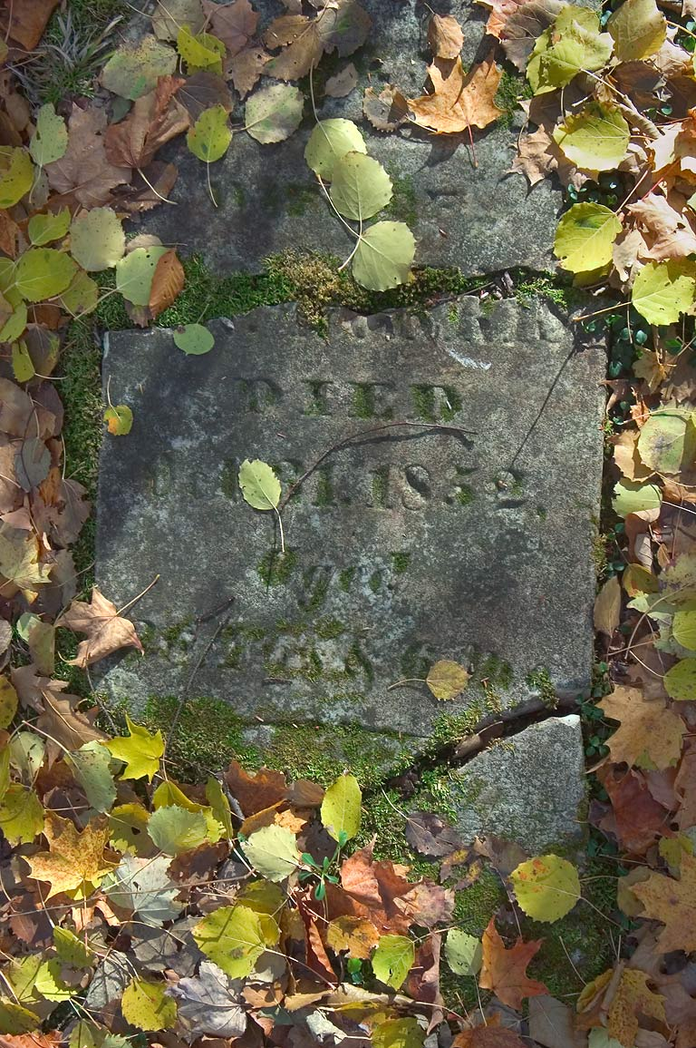 A tombstone of Buck Settlement Cemetery, near...west from Watkins Glen. New York