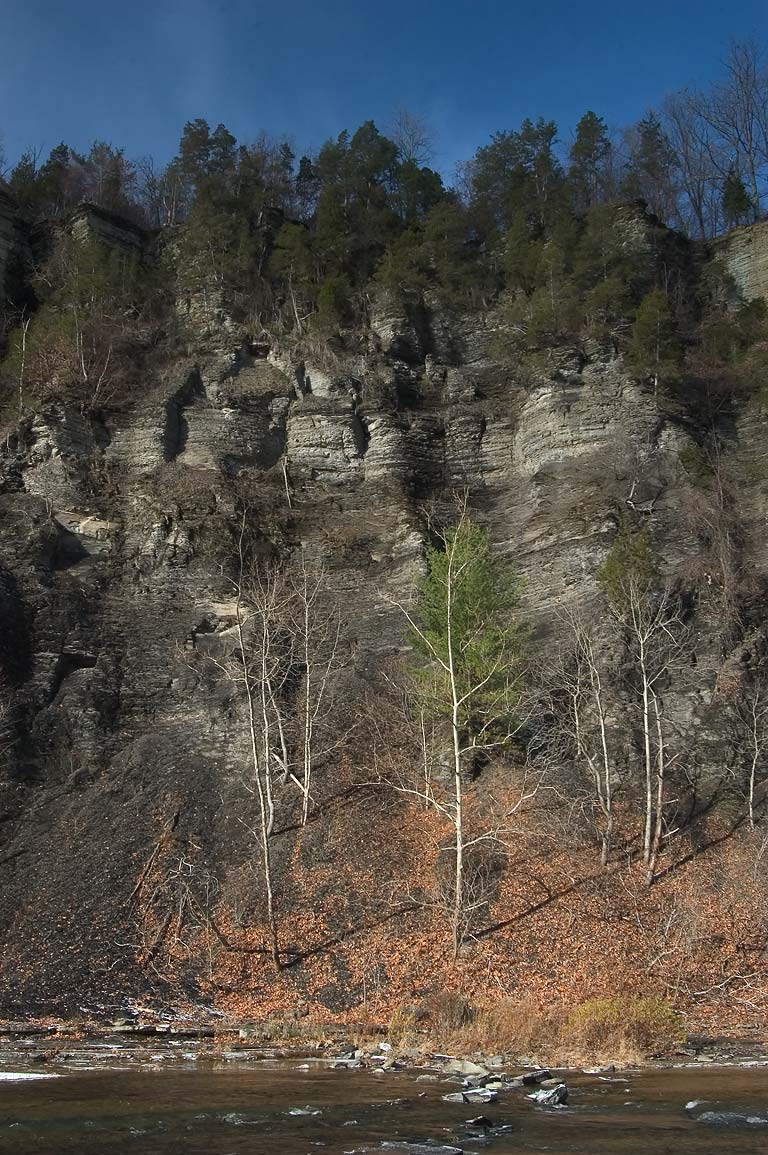 A wall of the gorge in Taughannock Falls State Park. New York
