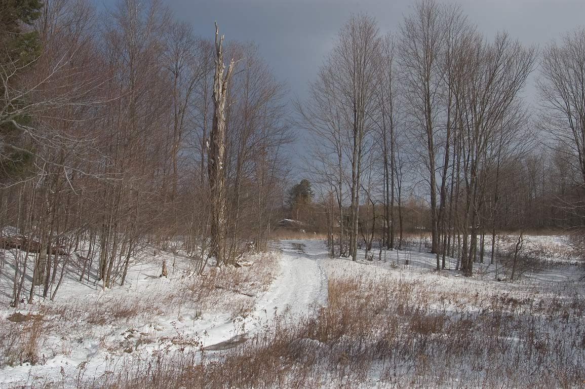A road near Fen Way trail in Lime Hollow Preserve in Cortland, east from Ithaca. New York