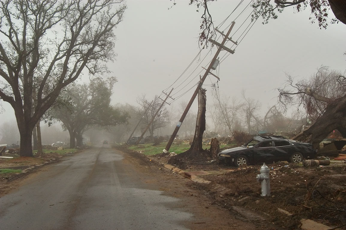 An oak alley and tilted electric poles at North...at morning. New Orleans, Louisiana
