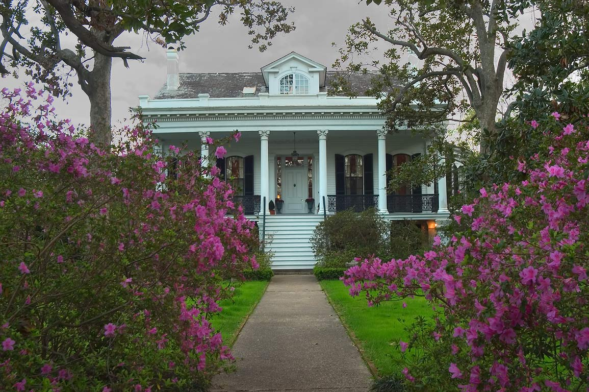 Palacios-Cain-Roos-Phillips-Claiborne-Favrot...in bloom. New Orleans, Louisiana