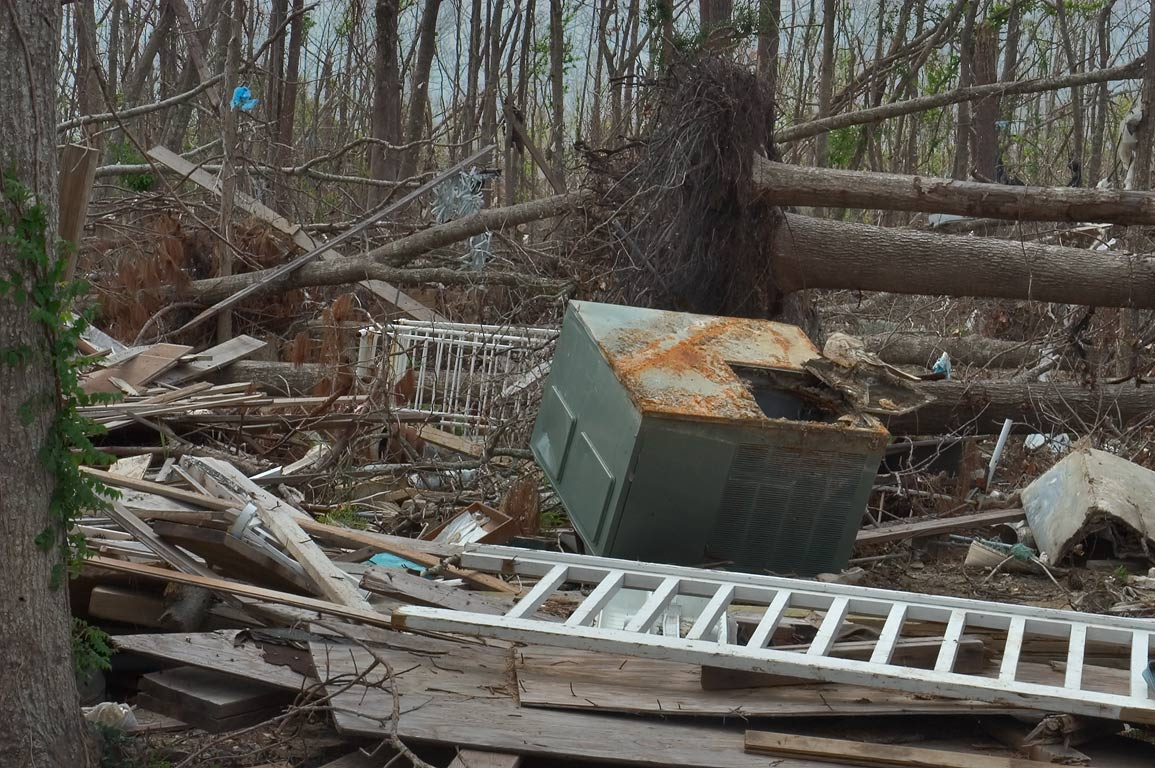 Debris in dead forest at Cedar Point Rd. in Bay St.Louis. Mississippi