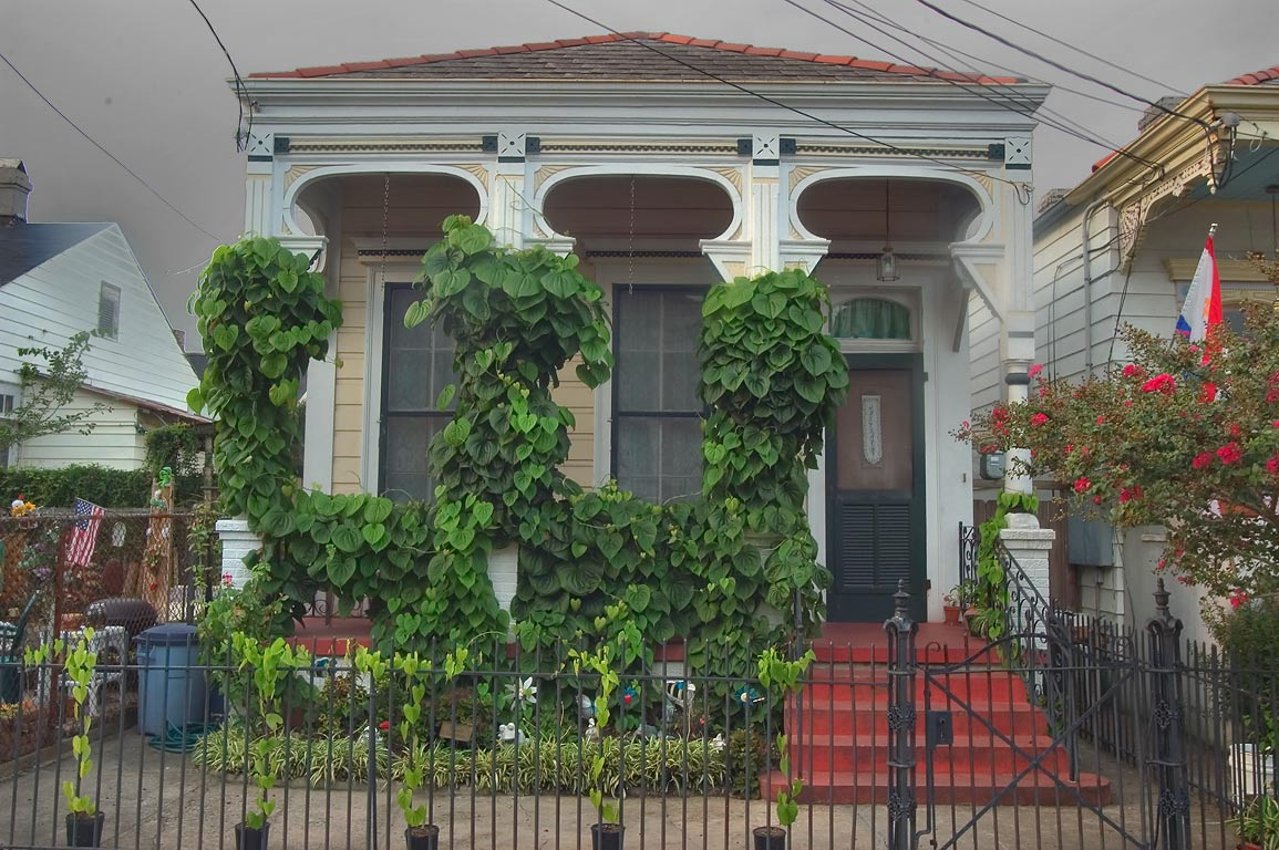 A house decorated by air potato (Dioscorea...Marigny. New Orleans, Louisiana