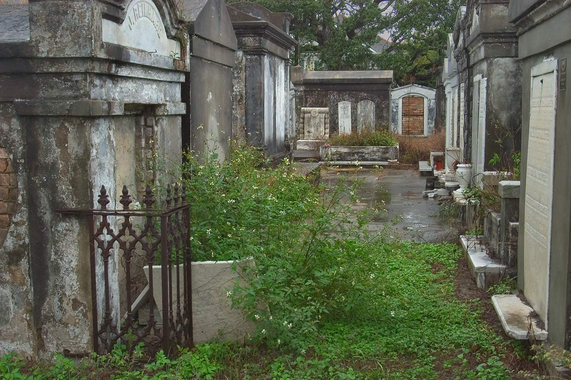 Lafayette Cemetery No. 1, an overgrown lane. New Orleans, Louisiana