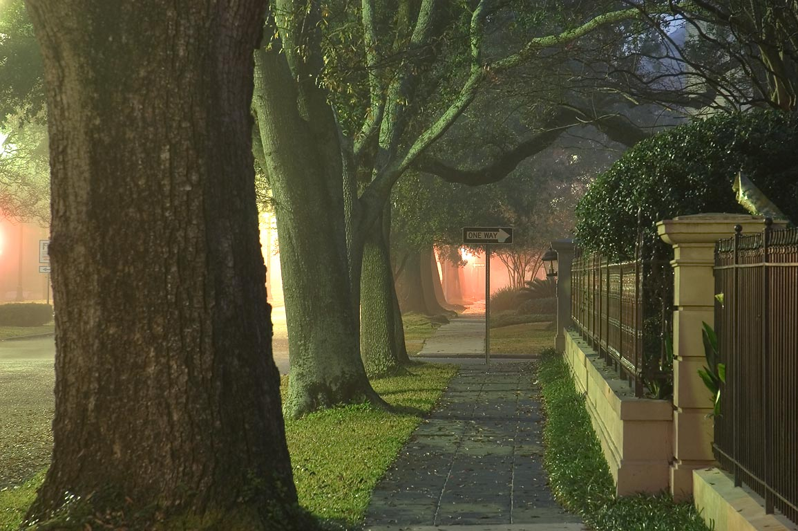 A sidewalk of St.Charles Ave. in fog. New Orleans, Louisiana
