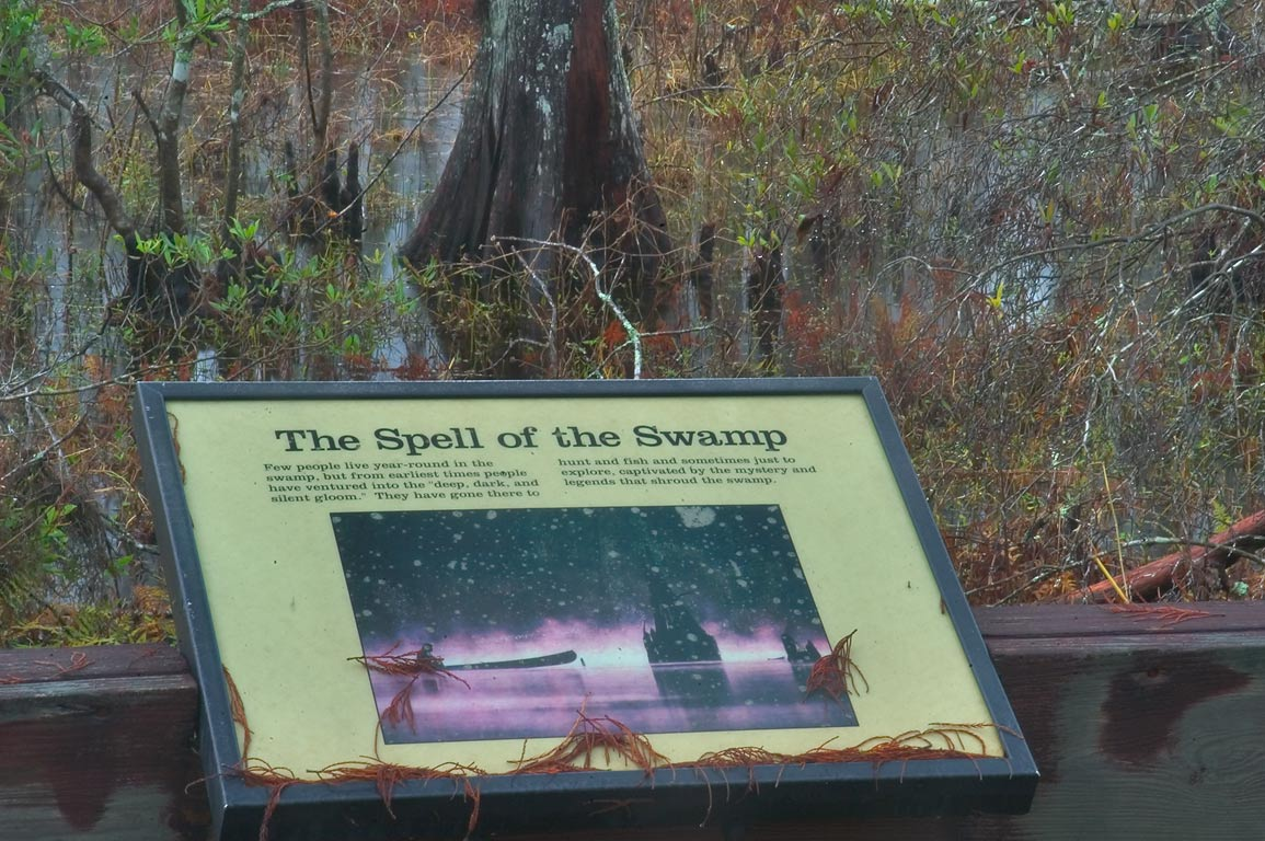 An interpretive poster at overlook of Bayou...South from New Orleans, Louisiana