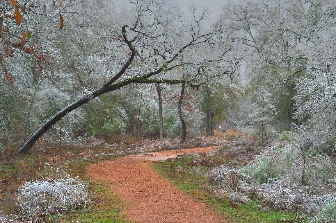 The path of Deer Run Trail near the bridge in...ice storm. College Station, Texas