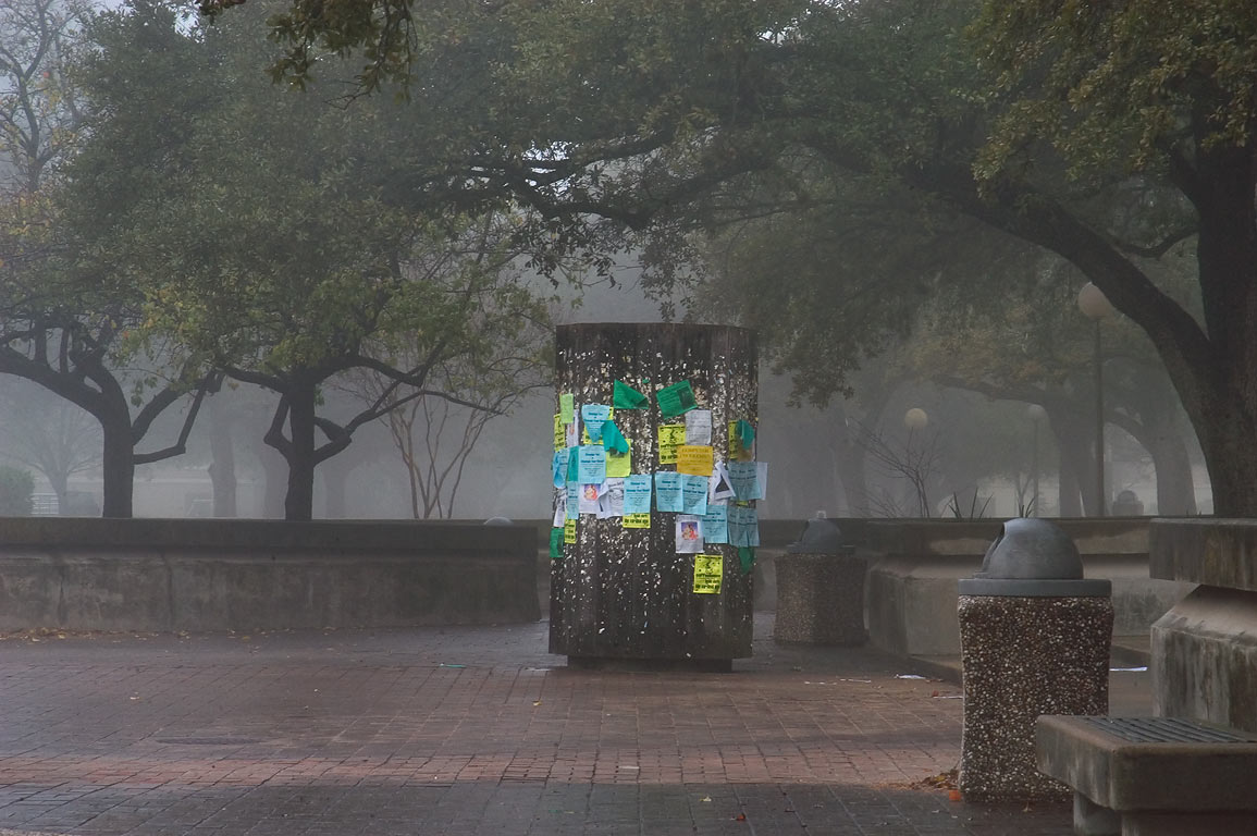 Military Walk near Bizzell Hall on campus of...in fog. College Station, Texas