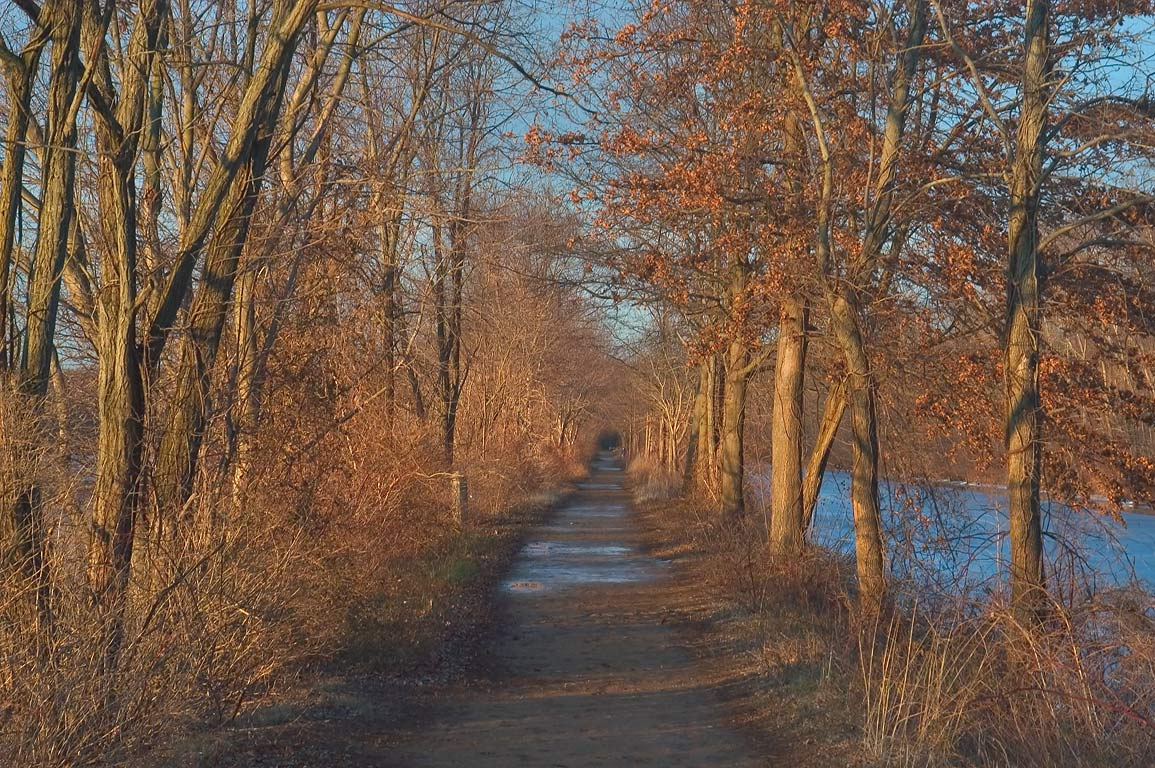 A towpath in Delaware and Raritan Canal State Park. Princeton, New Jersey