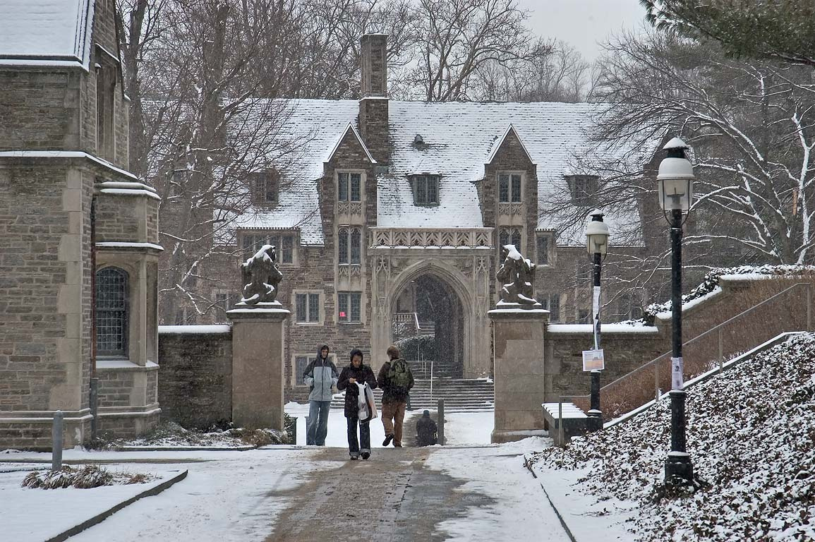 A gate of McCosh Walk with tigers between Little...University. Princeton, New Jersey