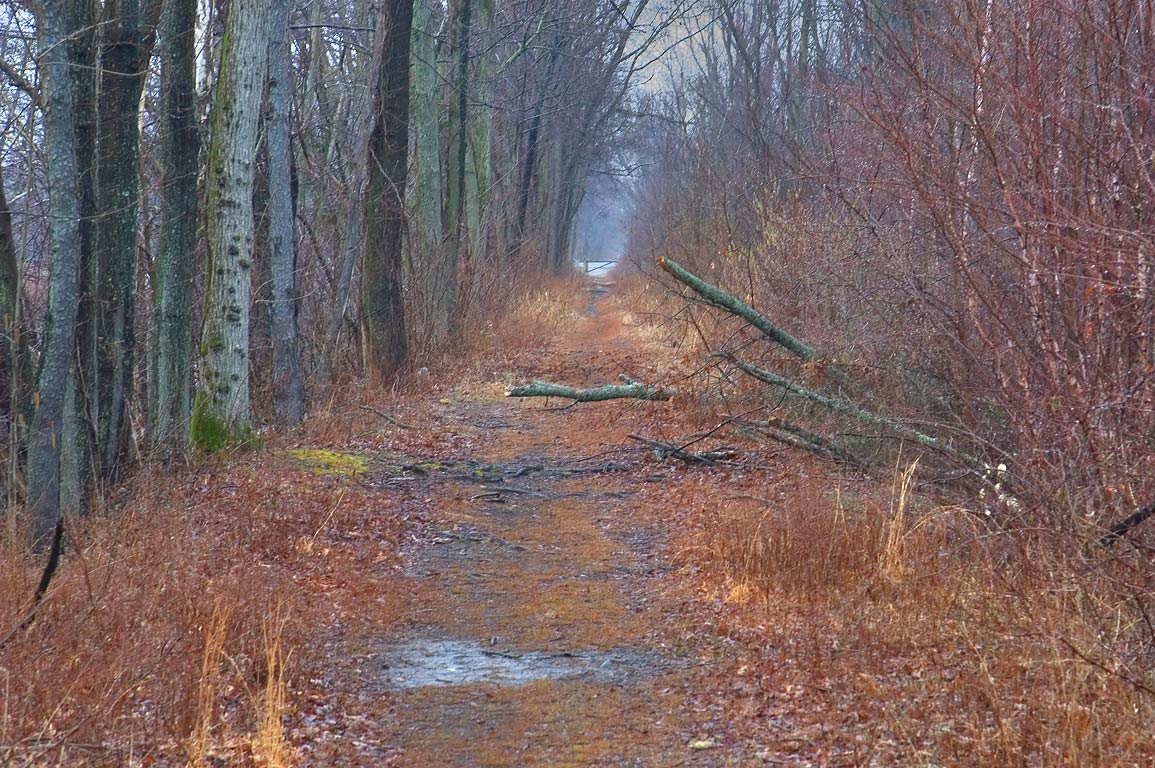 A trail in Delaware and Raritan Canal State Park. Princeton, New Jersey