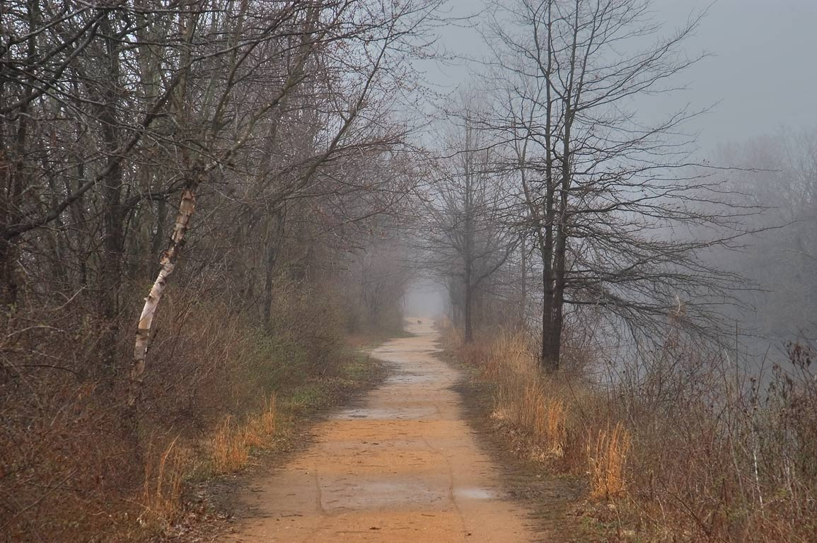 A path between Millstone River and Delaware and Raritan Canal in fog. Kingston, New Jersey